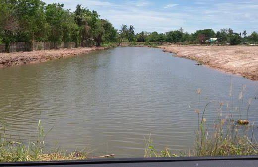 ขายที่ดิน ห้วยใหญ่ ชลบุรี 20 ไร่ (รวมน้ำ) ซอยเขามะกอก 13/1 ไม่ไกลจากตลาดน้ำสี่ภาค